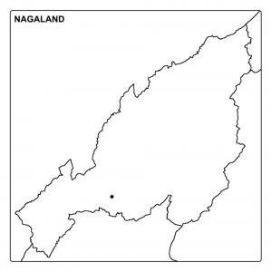 Download Nagaland Map